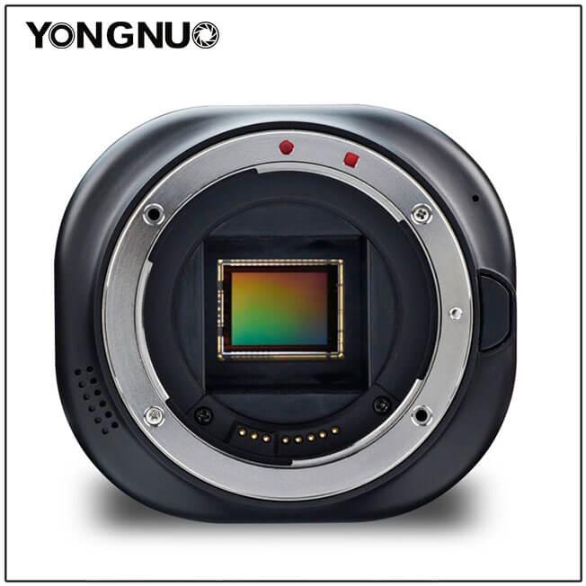 Yongnuo YN43 - example 1