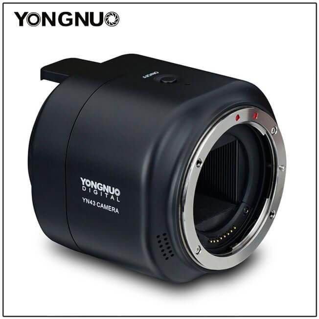 Yongnuo YN43 - example 2