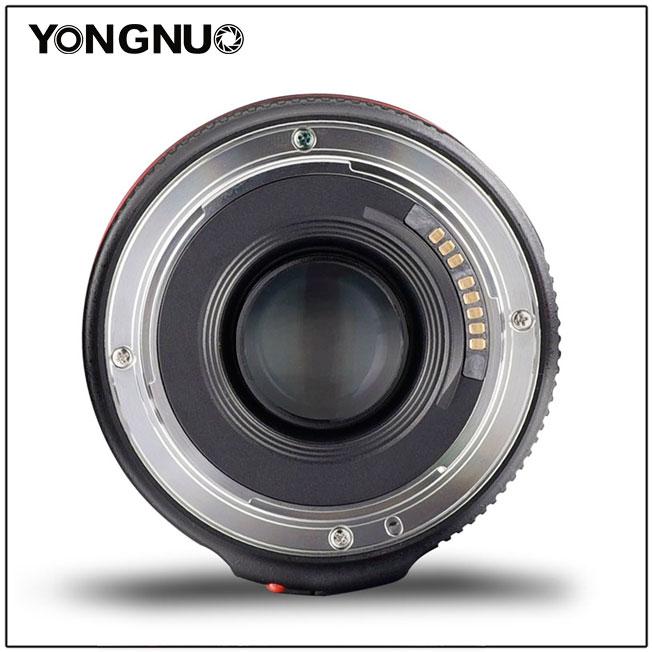Yongnuo yn50mm f/1.8 II - 5
