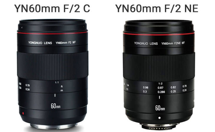 comparison Yongnuo YN60mm f/2 Nikon vs Canon
